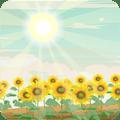 向日葵为什么会不断追�着太阳跑