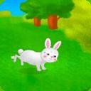 尾巴脫皮的兔子