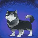 雪橇犬斯皮迪