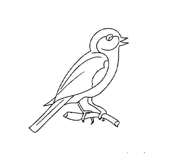 简笔画:一只落在教案上的相思鸟漫画课件下载树枝游戏荒岛图片