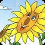 向日(ri)葵