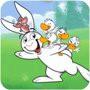 我的兔子朋友